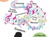 musicothérapie_base_resultat